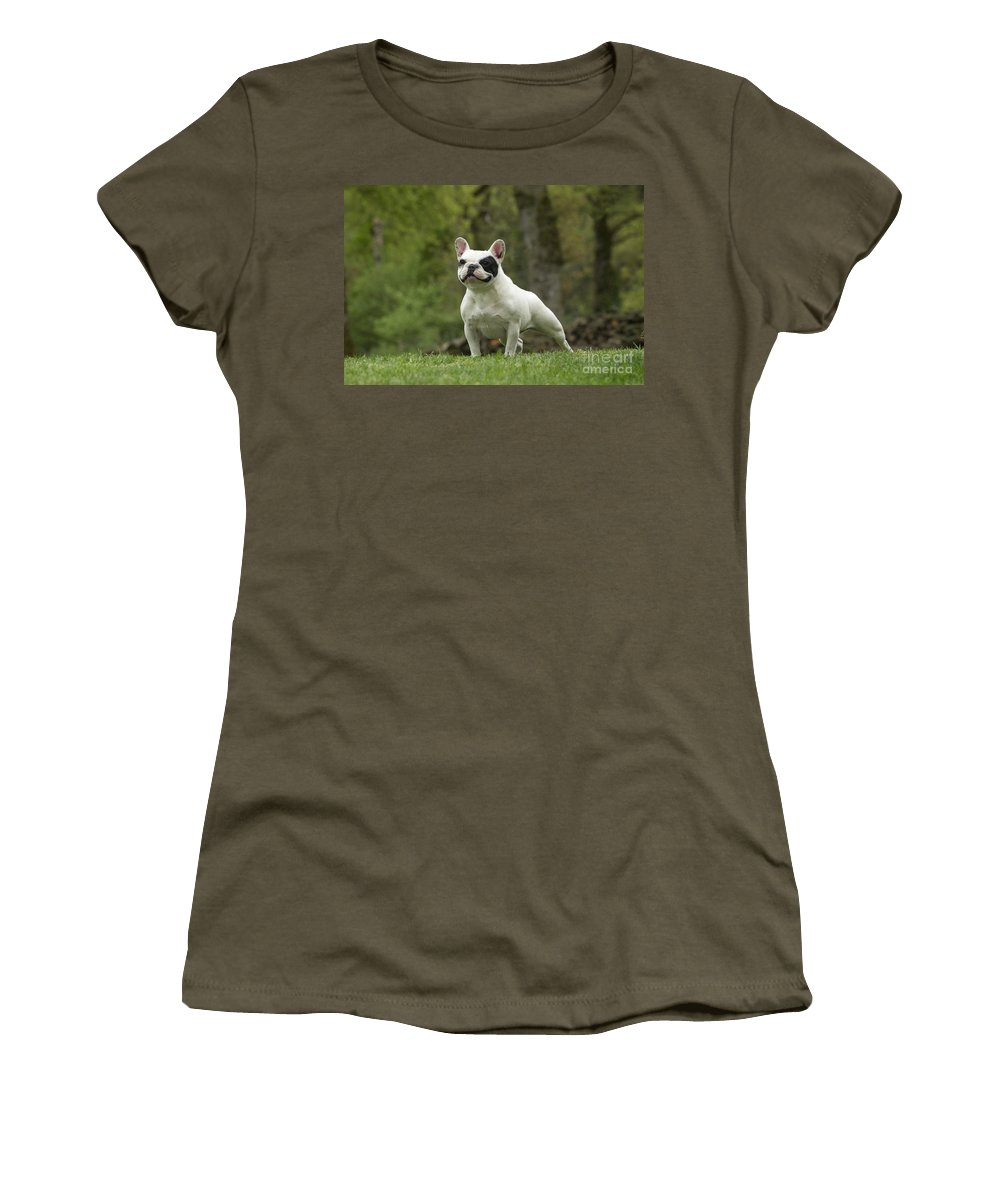 Dog Women's T-Shirt featuring the photograph French Bulldog by Jean-Michel Labat