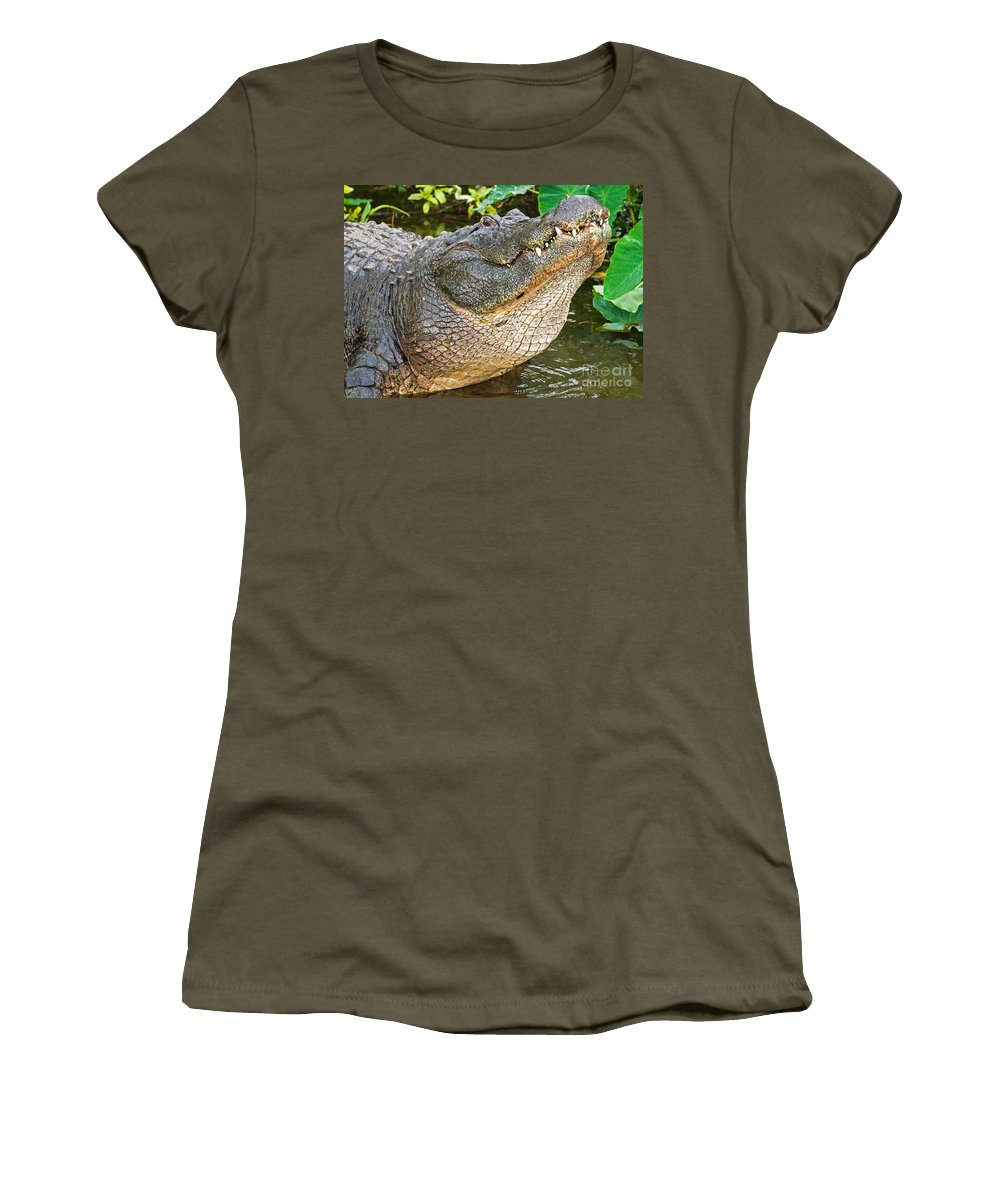 Alligator Women's T-Shirt featuring the photograph American Alligator by Millard H. Sharp