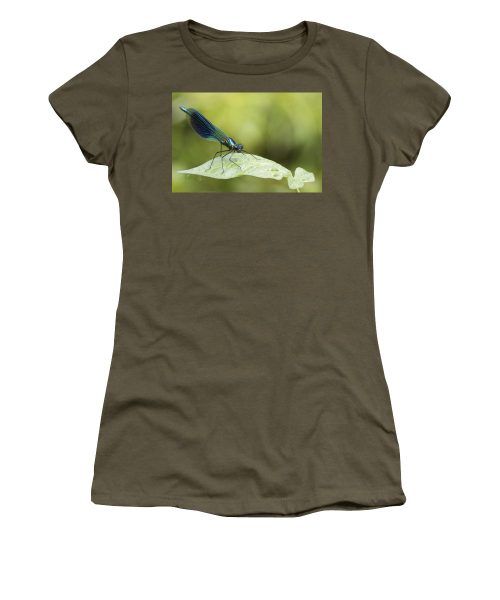 Banded Demoiselle Women's T-Shirt featuring the photograph Banded Demoiselle Digital Art by Chris Smith