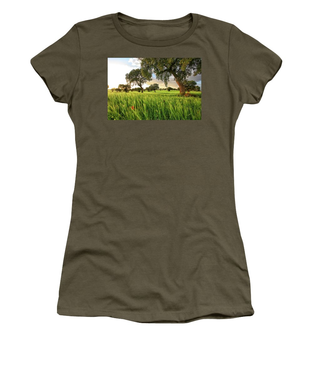 Oak Tree Women's T-Shirt featuring the photograph Cereal Crops And Oak Forest by David Santiago Garcia