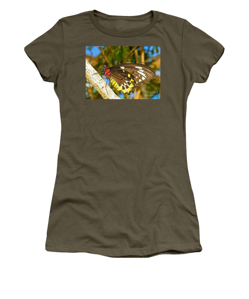 Tropical Butterfly Women's T-Shirt featuring the photograph Common Birdwing Butterfly by Millard H. Sharp