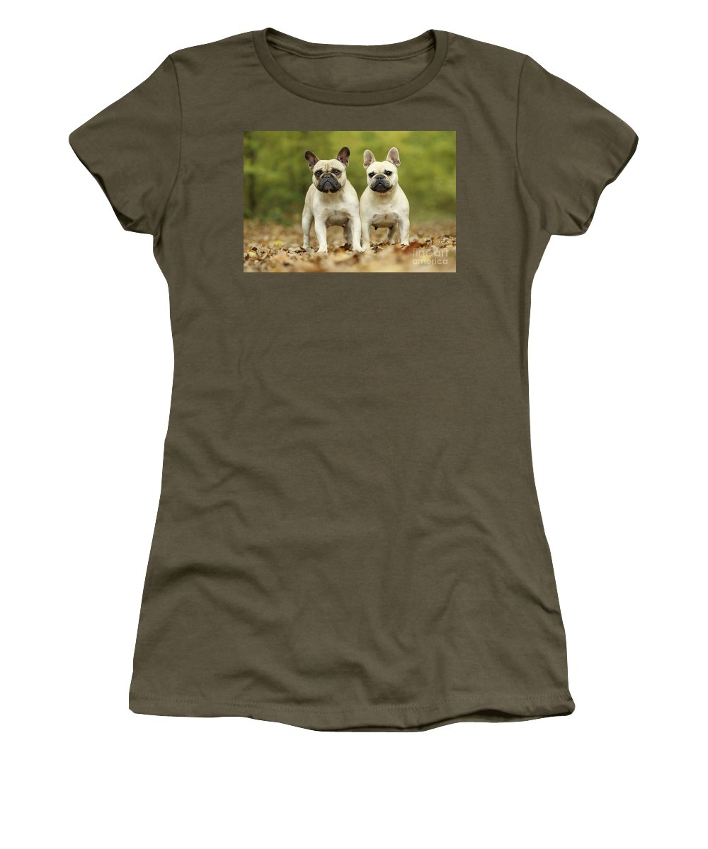 Dog Women's T-Shirt featuring the photograph French Bulldogs by Jean-Michel Labat