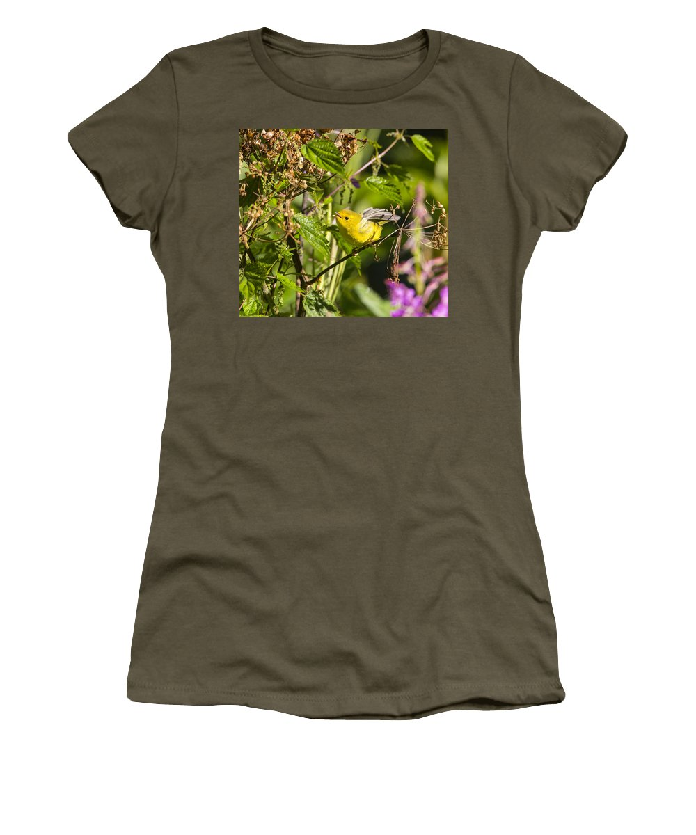 Doug Lloyd Women's T-Shirt featuring the photograph Hard At Work by Doug Lloyd