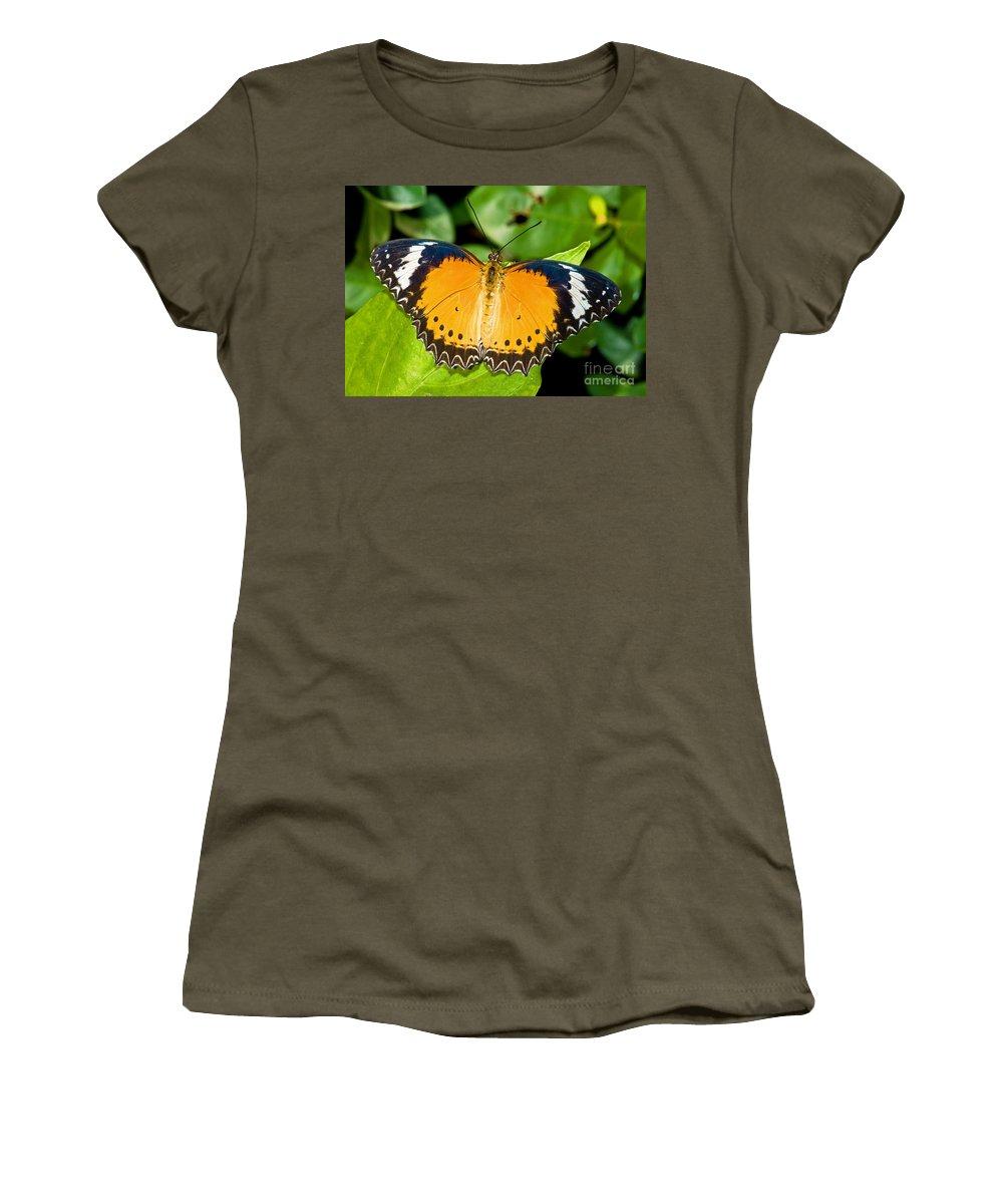 Nature Women's T-Shirt featuring the photograph Plain Tiger Butterfly by Millard H. Sharp