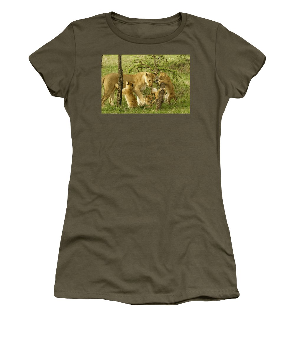 Lion Women's T-Shirt featuring the photograph Playing With Mom by Michele Burgess