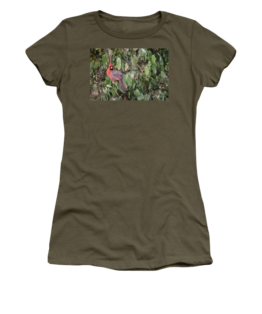 Cardinals Women's T-Shirt featuring the photograph Posing For The Photo by Ruth Housley