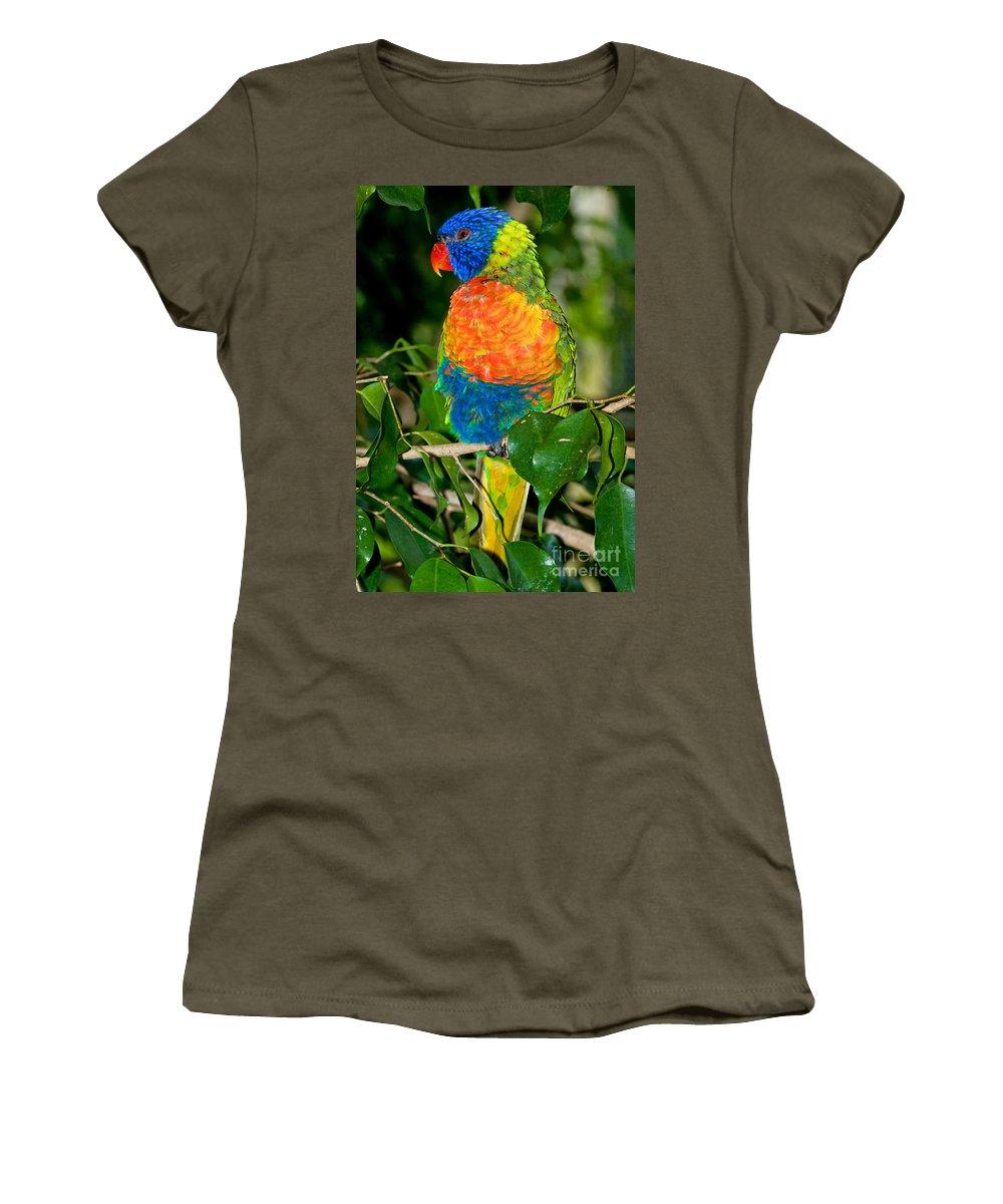 Nature Women's T-Shirt featuring the photograph Rainbow Lorikeet by Millard H. Sharp