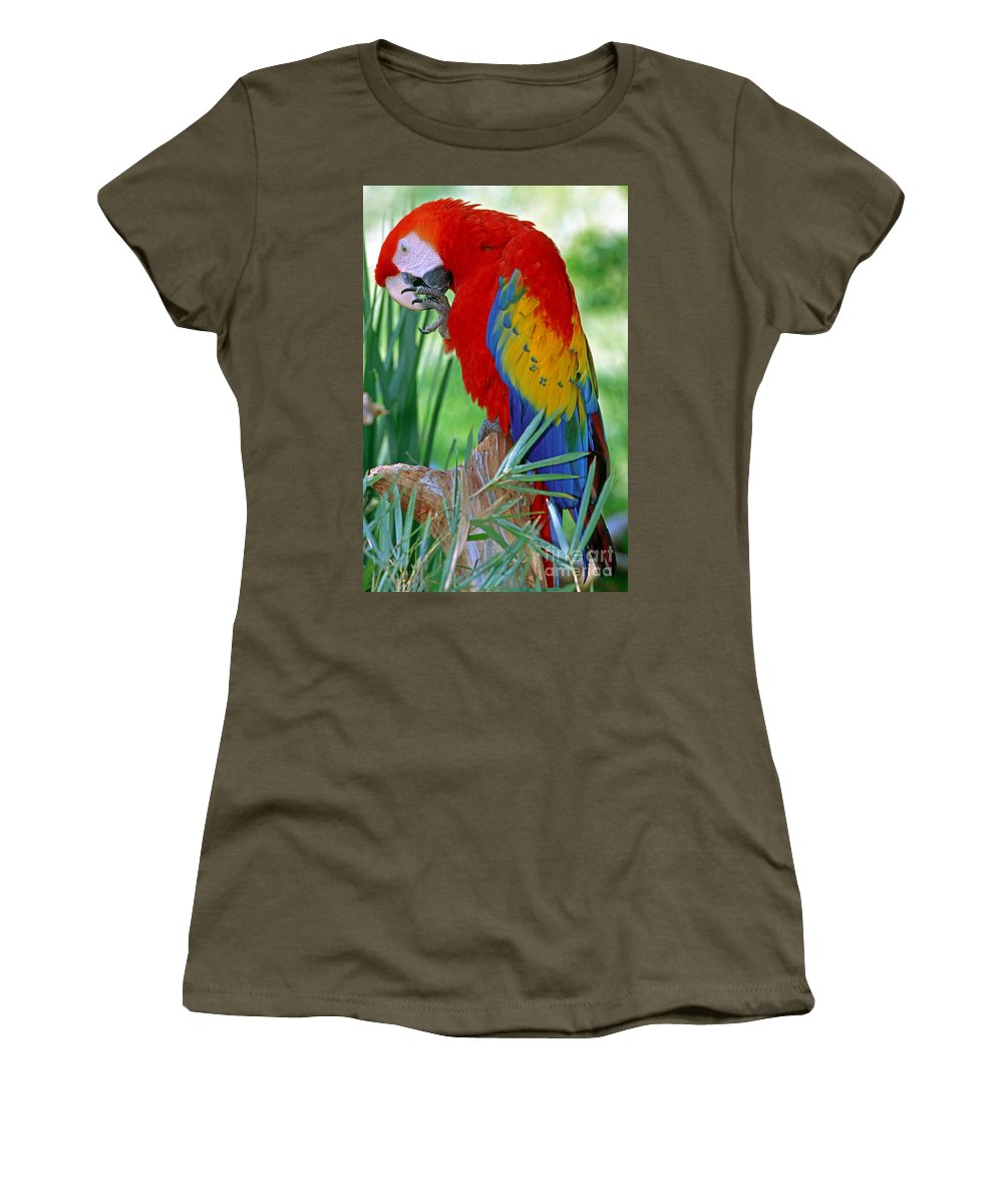 Scarlet Macaw Women's T-Shirt featuring the photograph Scarlet Macaw by Millard H. Sharp