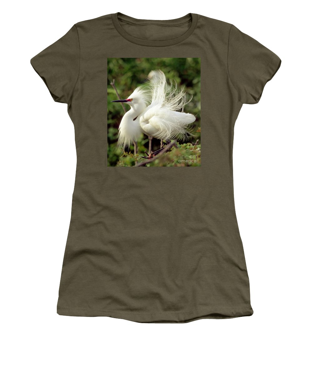 Snowy Egret Women's T-Shirt featuring the photograph Snowy Egret by Millard H. Sharp