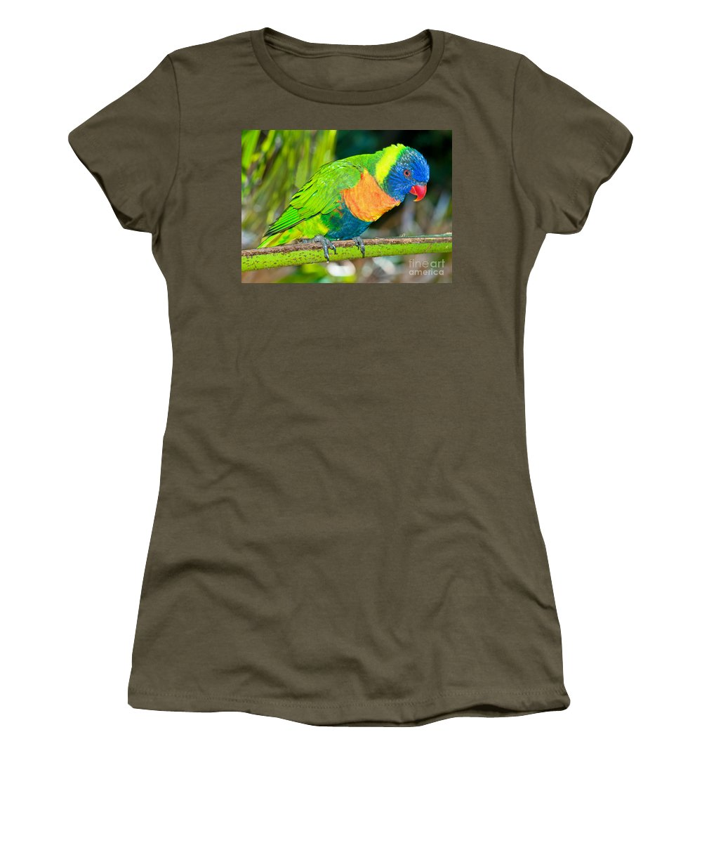 Nature Women's T-Shirt featuring the photograph Rainbow Lorikeet by Millard H. Sharp