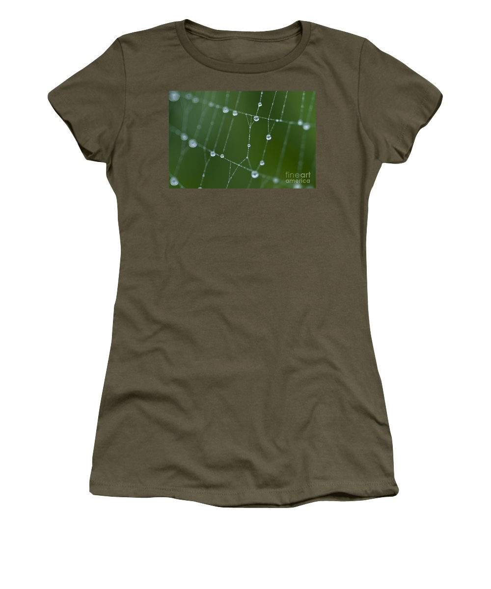 Aranae Women's T-Shirt featuring the photograph Spider Web With Dew Drops by Jim Corwin