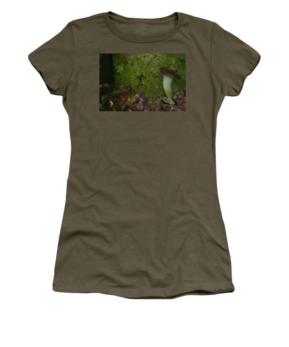 Taken Through Side Of Aquarium Women's T-Shirt (Athletic Fit) featuring the photograph Tropical Fish And Coral by Robert Floyd