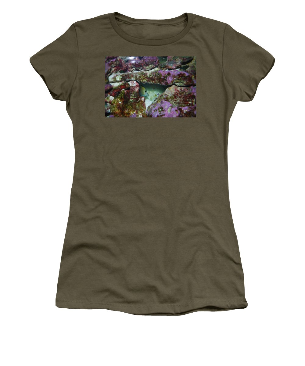 Taken Through Side Of Aquarium Women's T-Shirt (Athletic Fit) featuring the photograph Tropical Fish In Cave by Robert Floyd