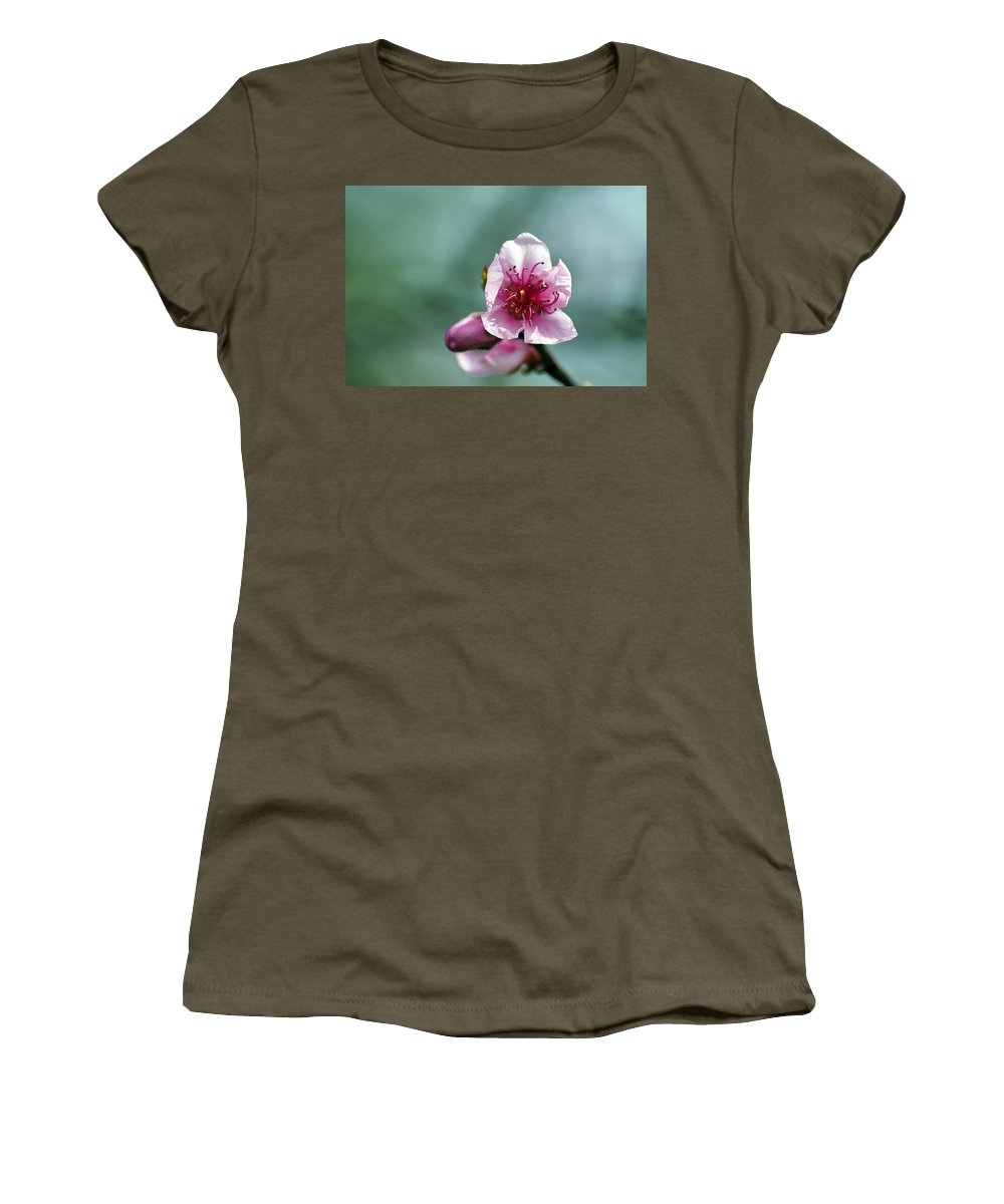 Winter Women's T-Shirt featuring the photograph Pink Blossom by Paulo Goncalves