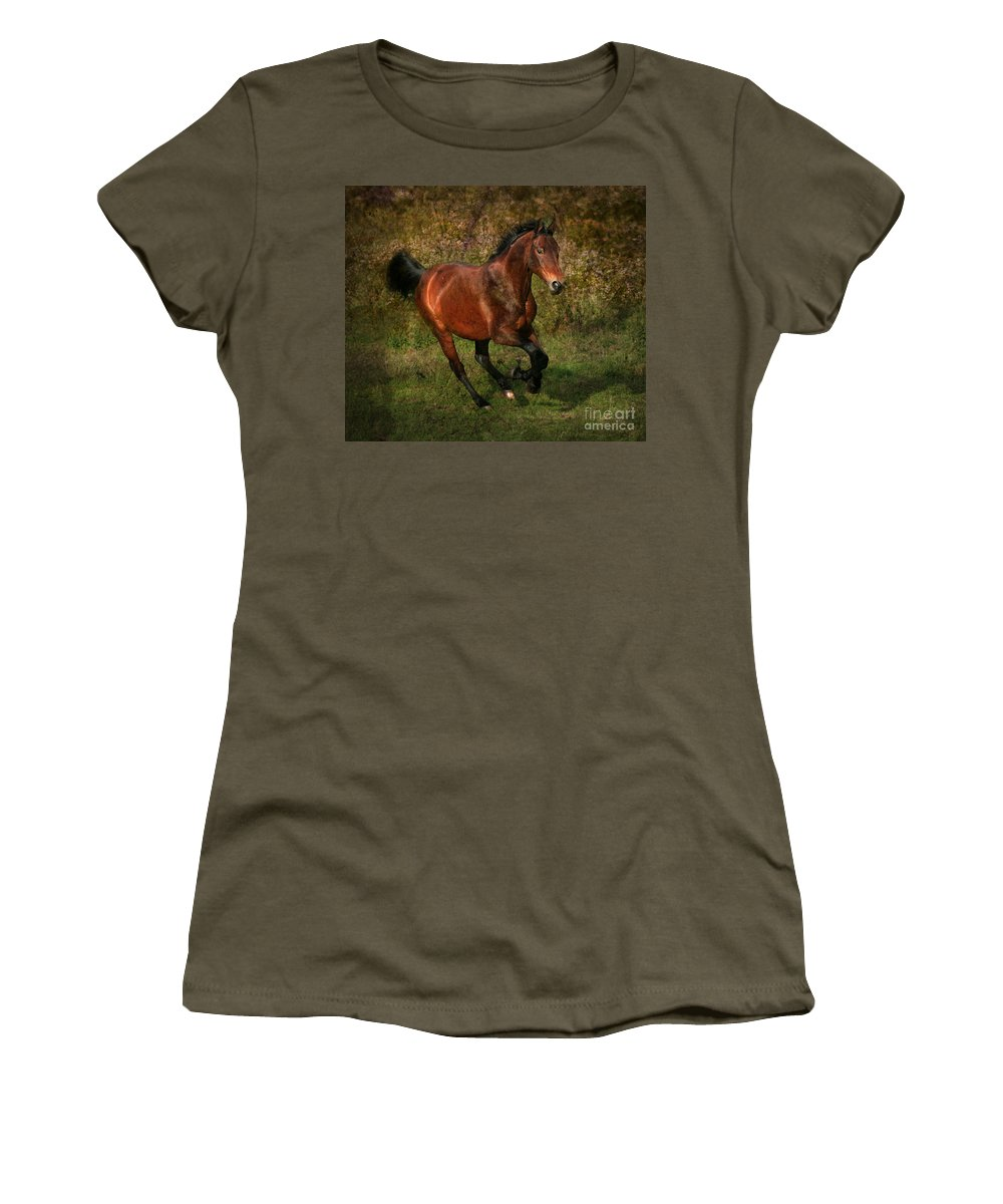 Horse Women's T-Shirt featuring the photograph The Bay Horse by Angel Ciesniarska