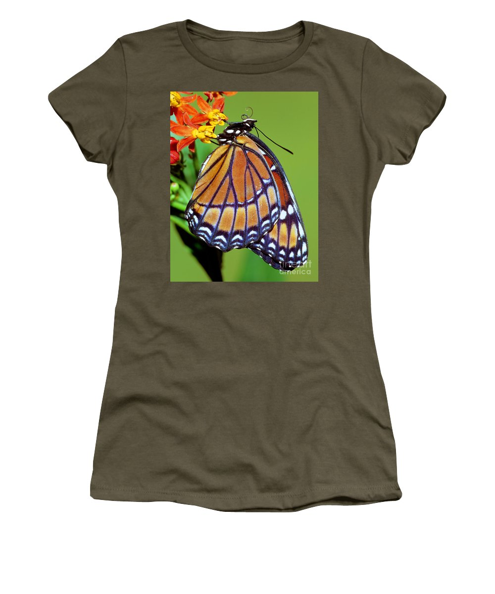 Viceroy Butterfly Women's T-Shirt featuring the photograph Viceroy Butterfly by Millard H. Sharp