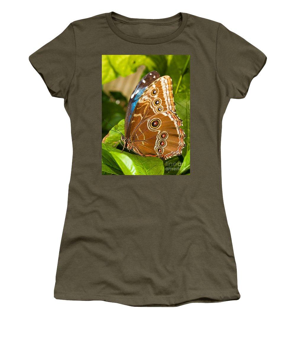 Nature Women's T-Shirt featuring the photograph Blue Morpho Butterfly by Millard H. Sharp