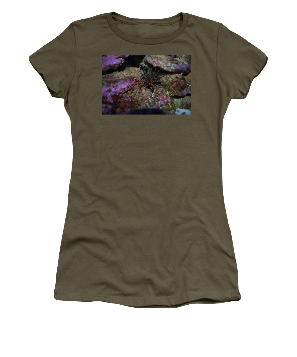 Taken Through Side Of Aquarium Women's T-Shirt (Athletic Fit) featuring the photograph Coral by Robert Floyd