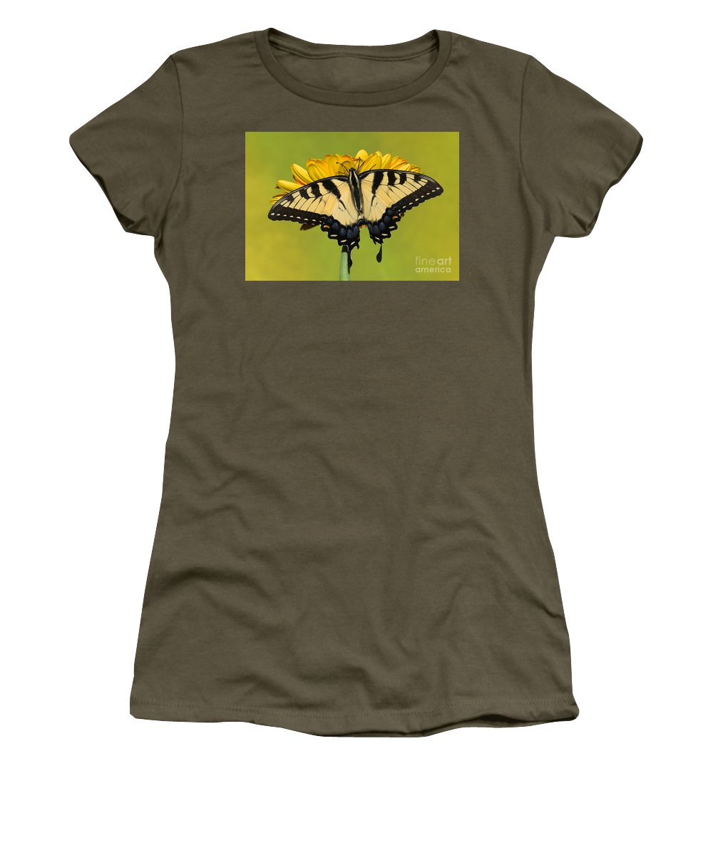 Eastern Tiger Swallowtail Butterfly Women's T-Shirt featuring the photograph Eastern Tiger Swallowtail Butterfly by Millard H. Sharp