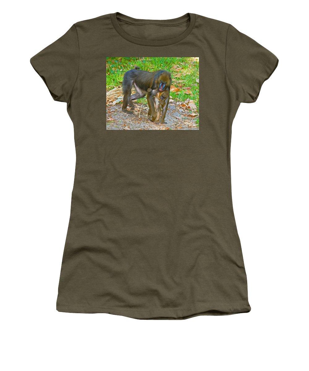 Nature Women's T-Shirt featuring the photograph Mandrill by Millard H. Sharp