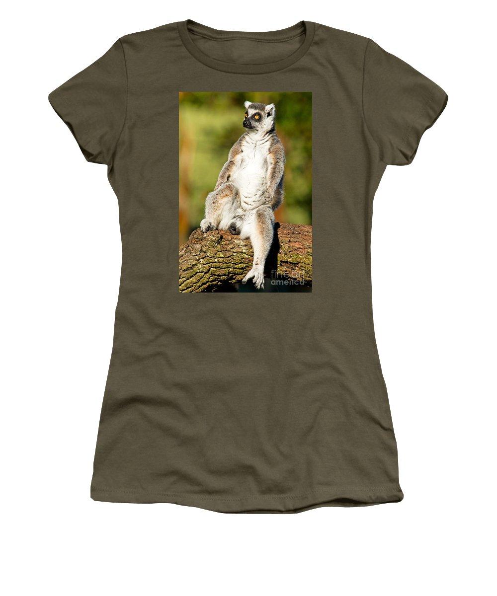 Ring-tailed Lemur Women's T-Shirt featuring the photograph Ring Tailed Lemur by Millard H. Sharp