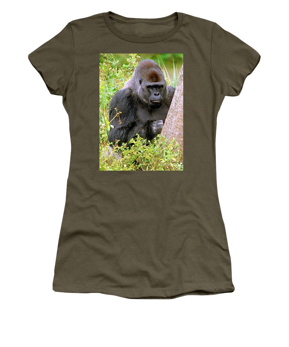 Animal Women's T-Shirt featuring the photograph Western Lowland Gorilla by Millard H. Sharp