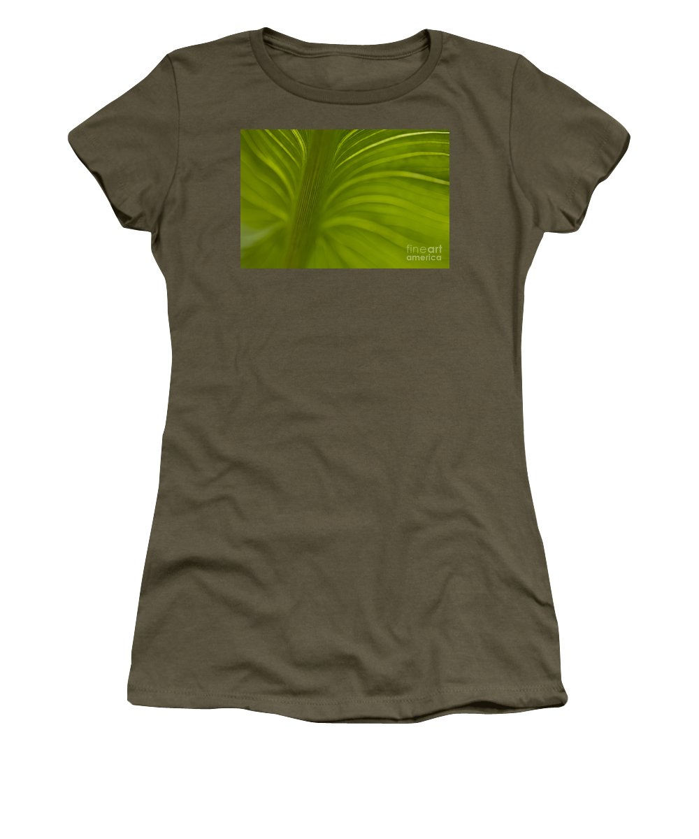 Beauty Women's T-Shirt featuring the photograph Calla Lily Stem Close Up by Jim Corwin