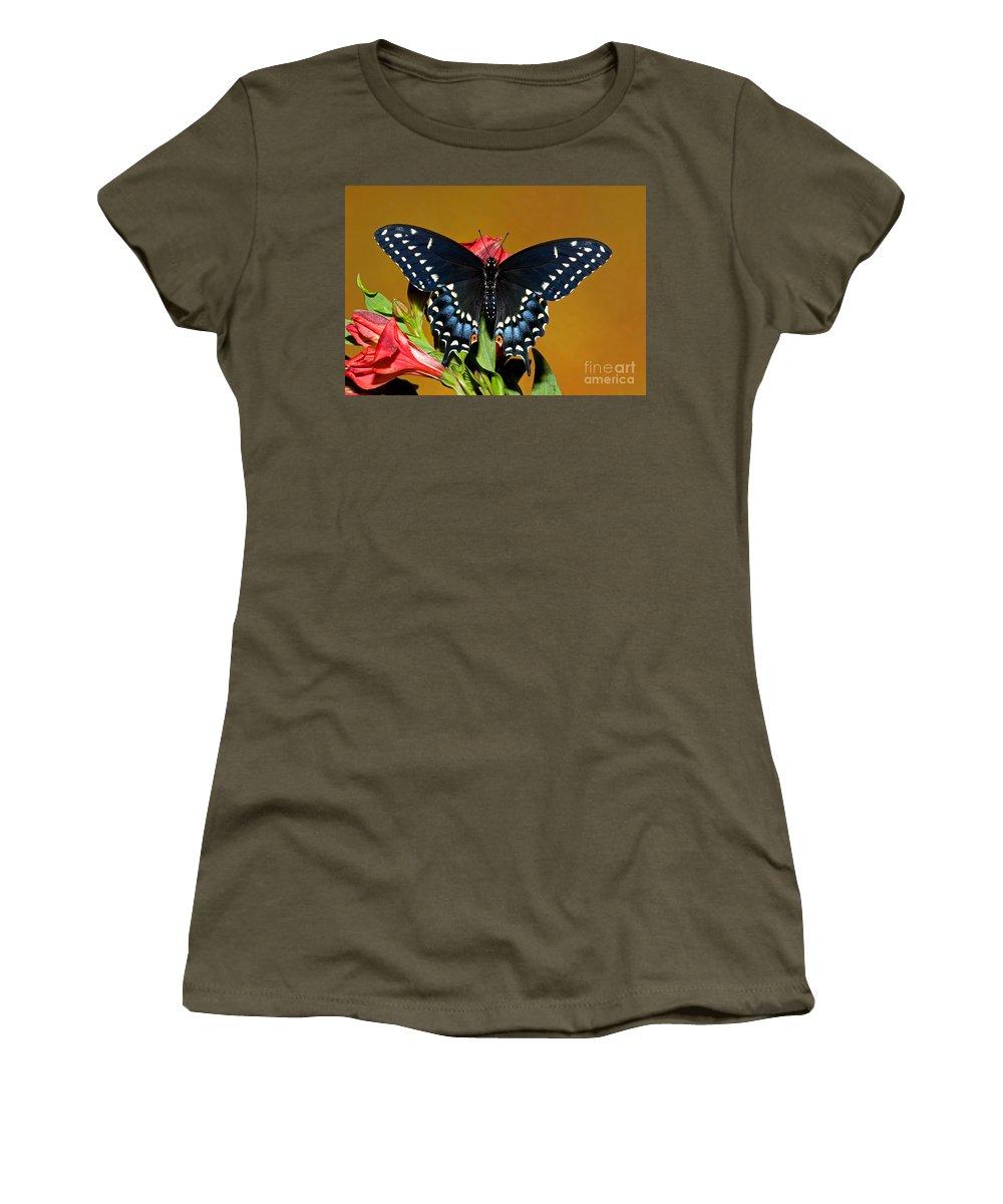 Fauna Women's T-Shirt featuring the photograph Eastern Black Swallowtail by Millard H. Sharp