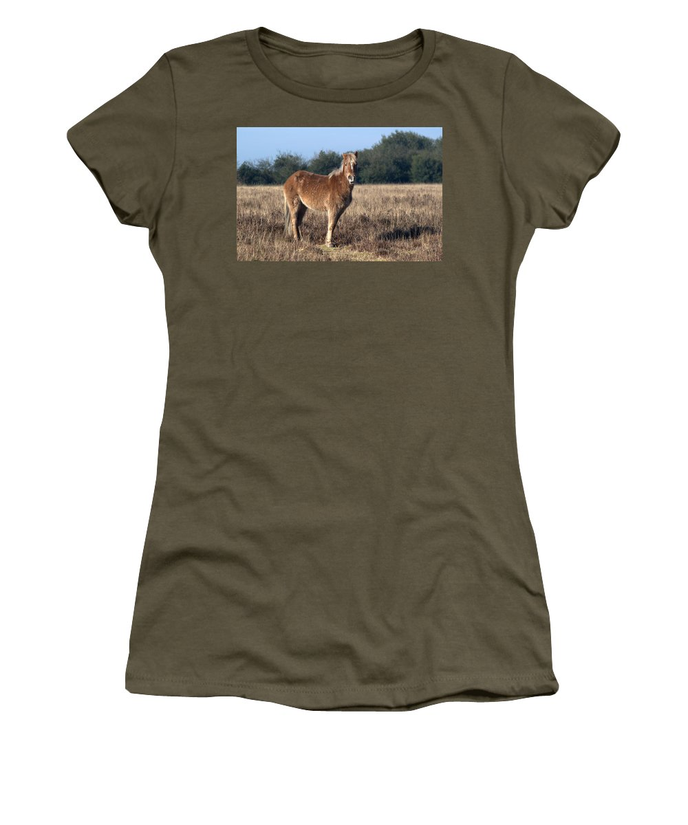 New Forest Pony Women's T-Shirt (Athletic Fit) featuring the photograph New Forest Pony by Chris Day
