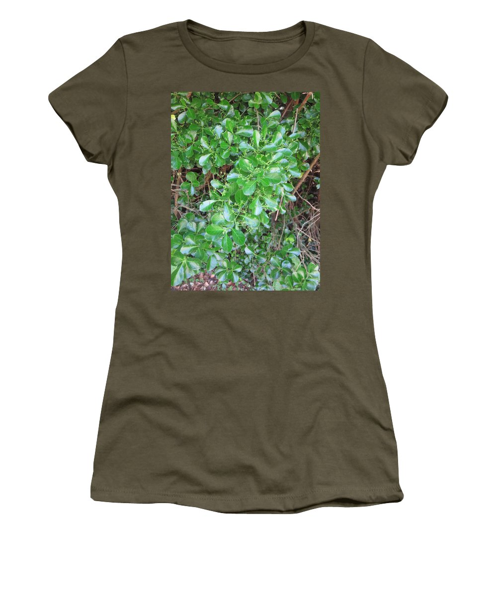 Nature Women's T-Shirt featuring the photograph Camera Peak Thru Nature Buy Faa Print Products Or Down Load For Self Printing Navin Joshi Rights Man by Navin Joshi