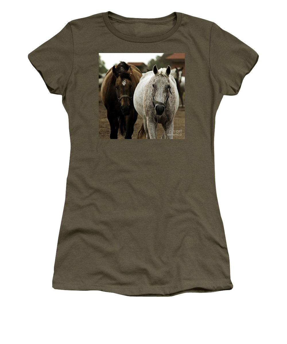 Horse Women's T-Shirt (Athletic Fit) featuring the photograph Horses by Angel Ciesniarska