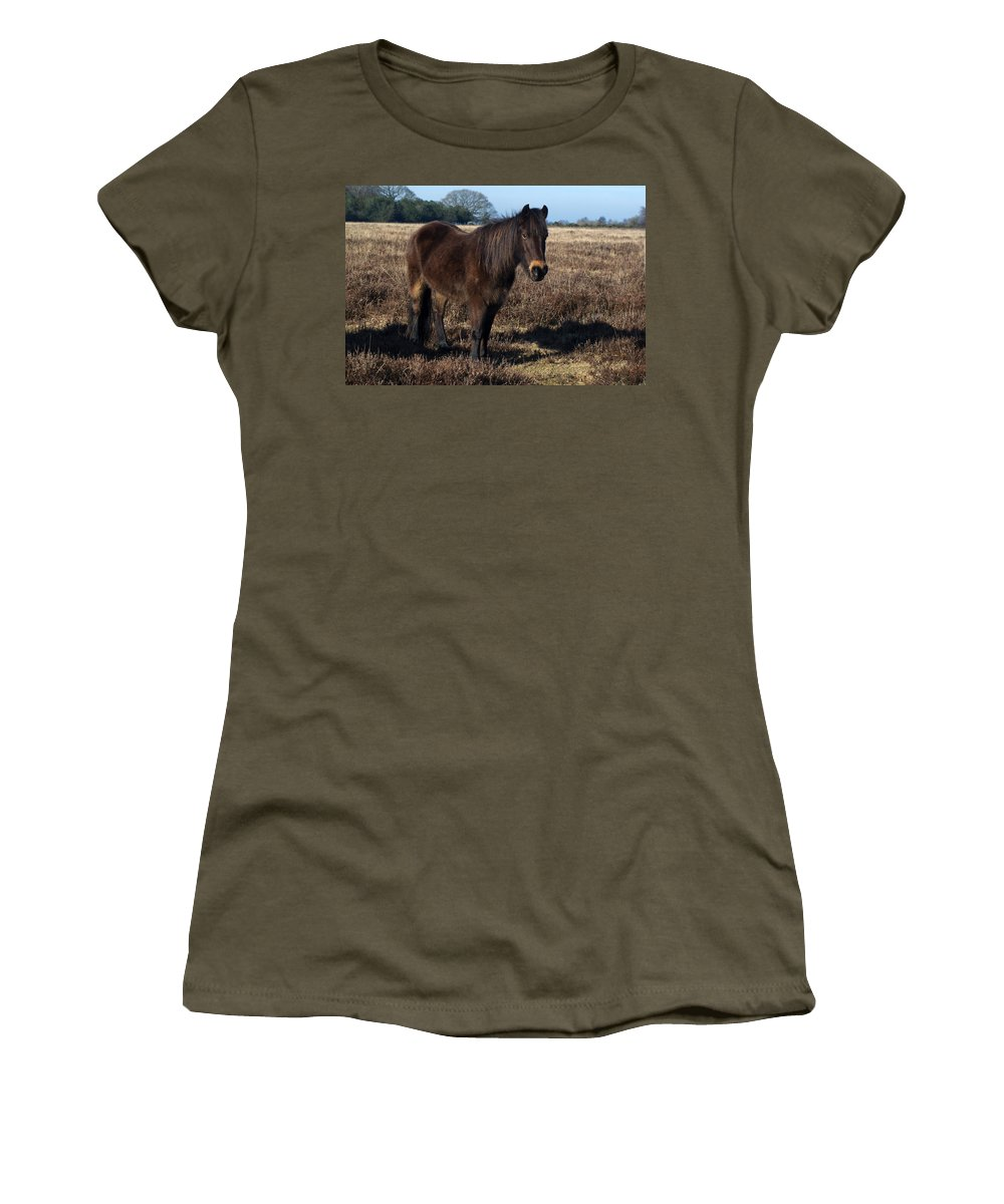 New Forest Pony Women's T-Shirt featuring the photograph New Forest Pony by Chris Day