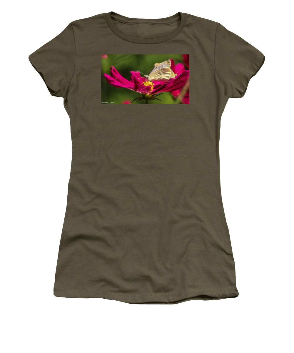 Butterfly Women's T-Shirt featuring the photograph A Georgous Butterfly Macrophotography by Stwayne Keubrick