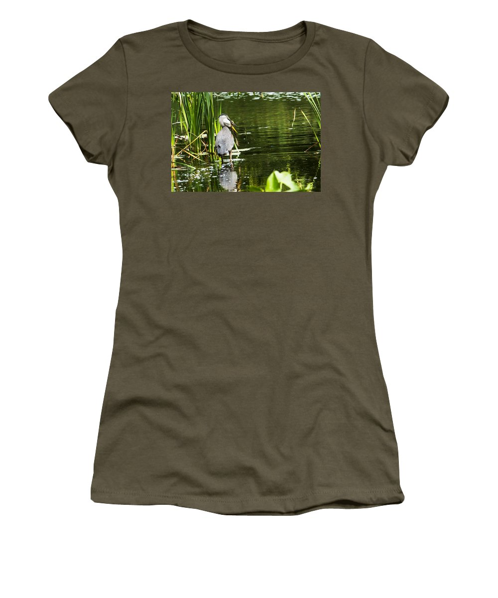 Great Blue Heron Women's T-Shirt (Athletic Fit) featuring the photograph A Missing Frog by Edward Peterson