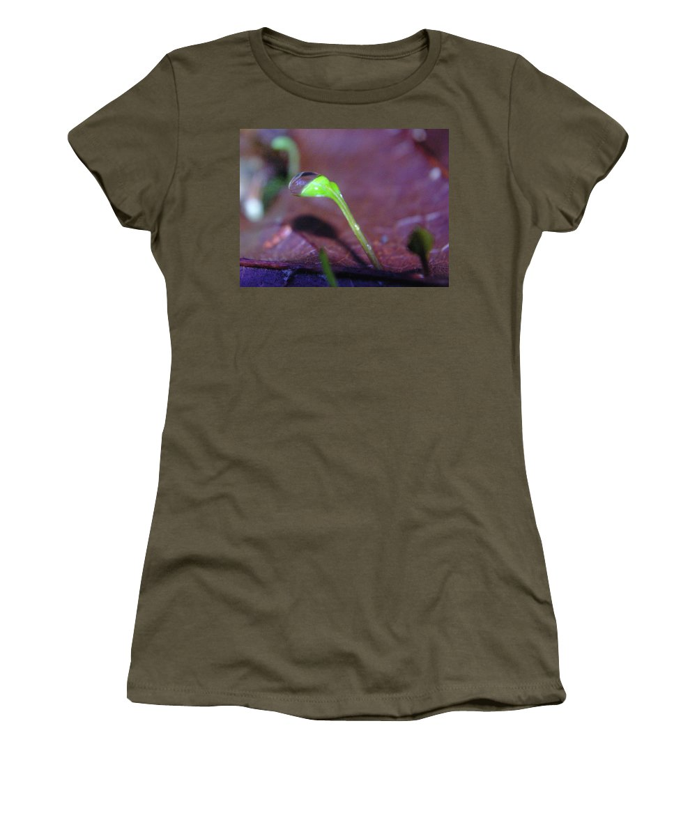 Sprouts Women's T-Shirt featuring the photograph A Sprout Lifting A Waterdrop by Jeff Swan