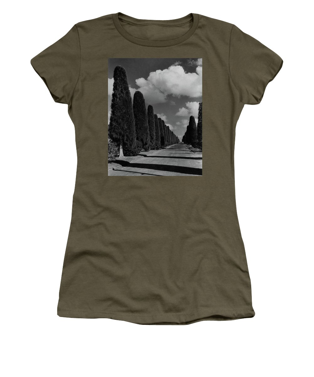 Cityscape Women's T-Shirt featuring the photograph A Street Lined With Cypress Trees by John Kabel