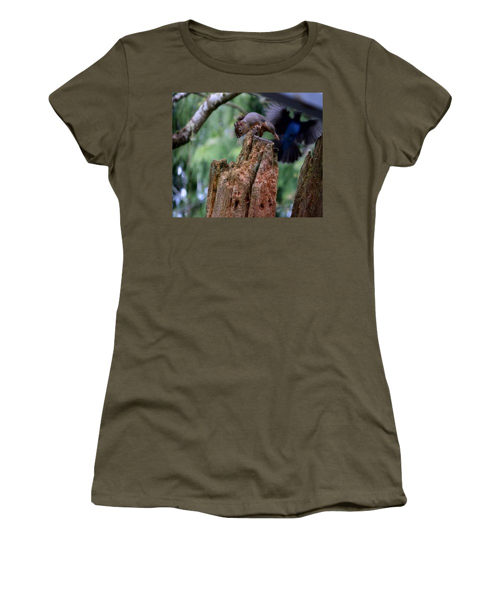 Mammals Women's T-Shirt featuring the photograph Air Attack On Bud by Kym Backland