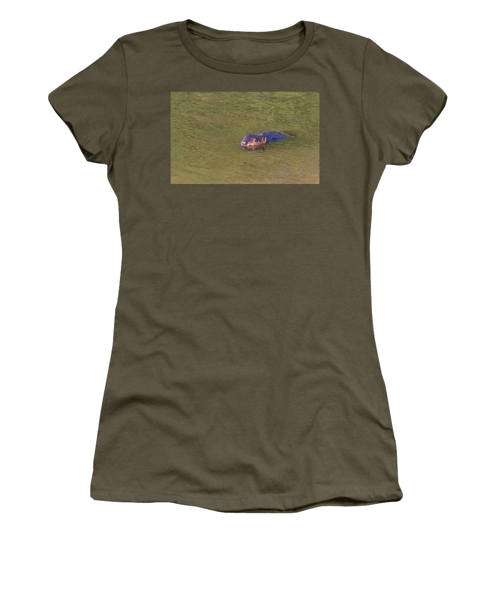 Indian Head Women's T-Shirt featuring the photograph American Beaver by Leah Palmer