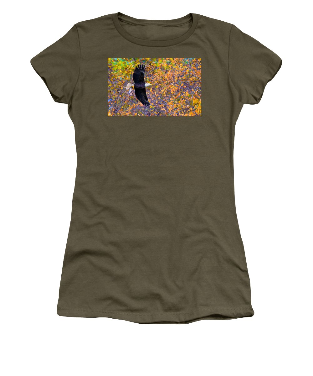 Eagle Women's T-Shirt featuring the photograph American Eagle In Autumn by William Jobes