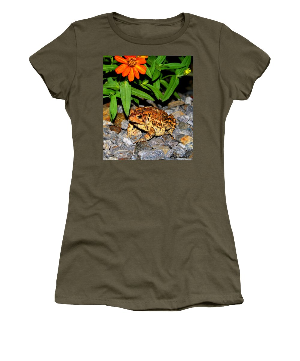 Toad Women's T-Shirt featuring the photograph American Toad by Kathryn Meyer