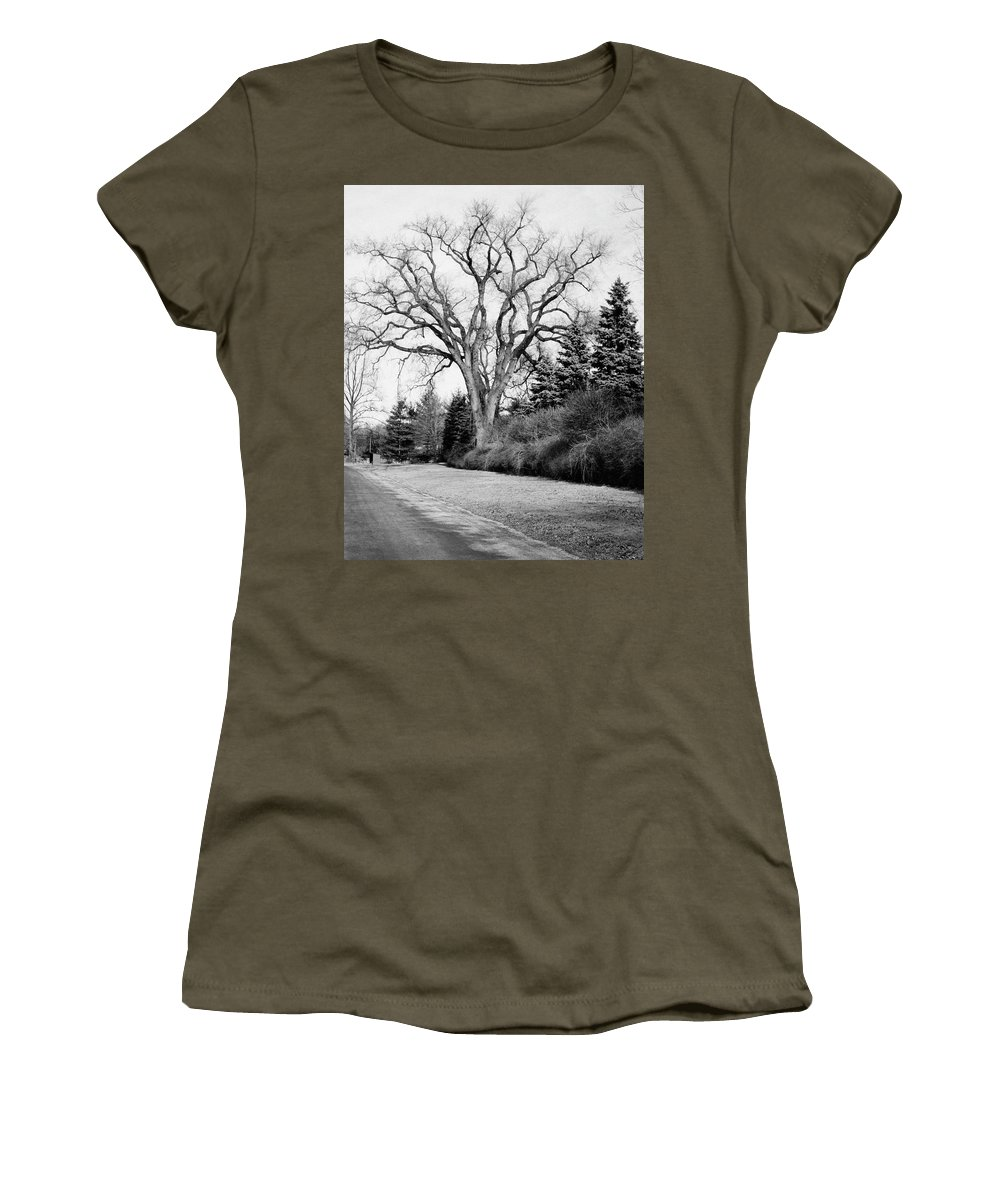 Exterior Women's T-Shirt featuring the photograph An Elm Tree At The Side Of A Road by Tom Leonard