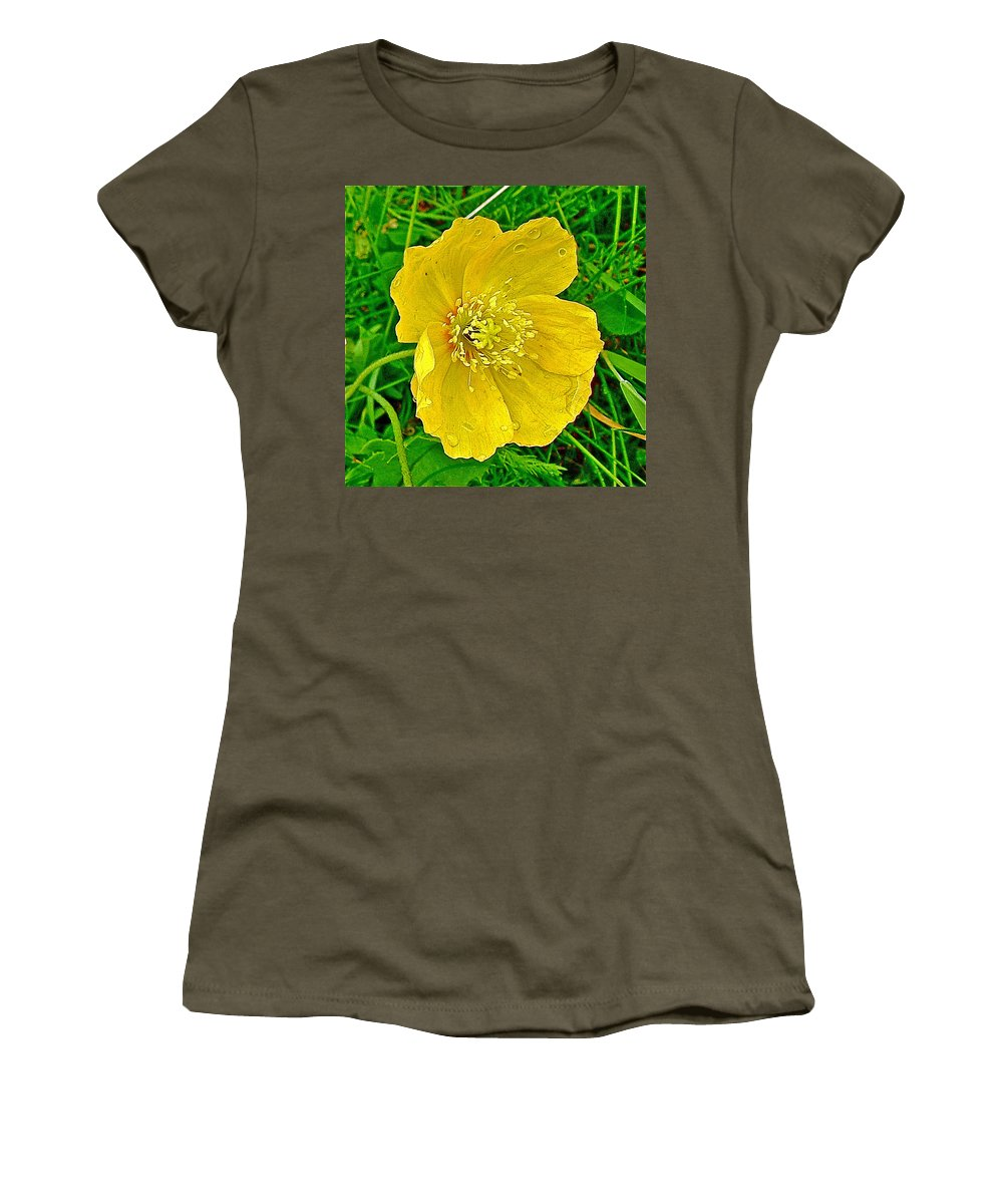 Arctic Poppy Near Maligne Lake Trail In Jasper National Park Women's T-Shirt featuring the photograph Arctic Poppy Near Maligne Lake Trail In Jasper National Park-alberta by Ruth Hager