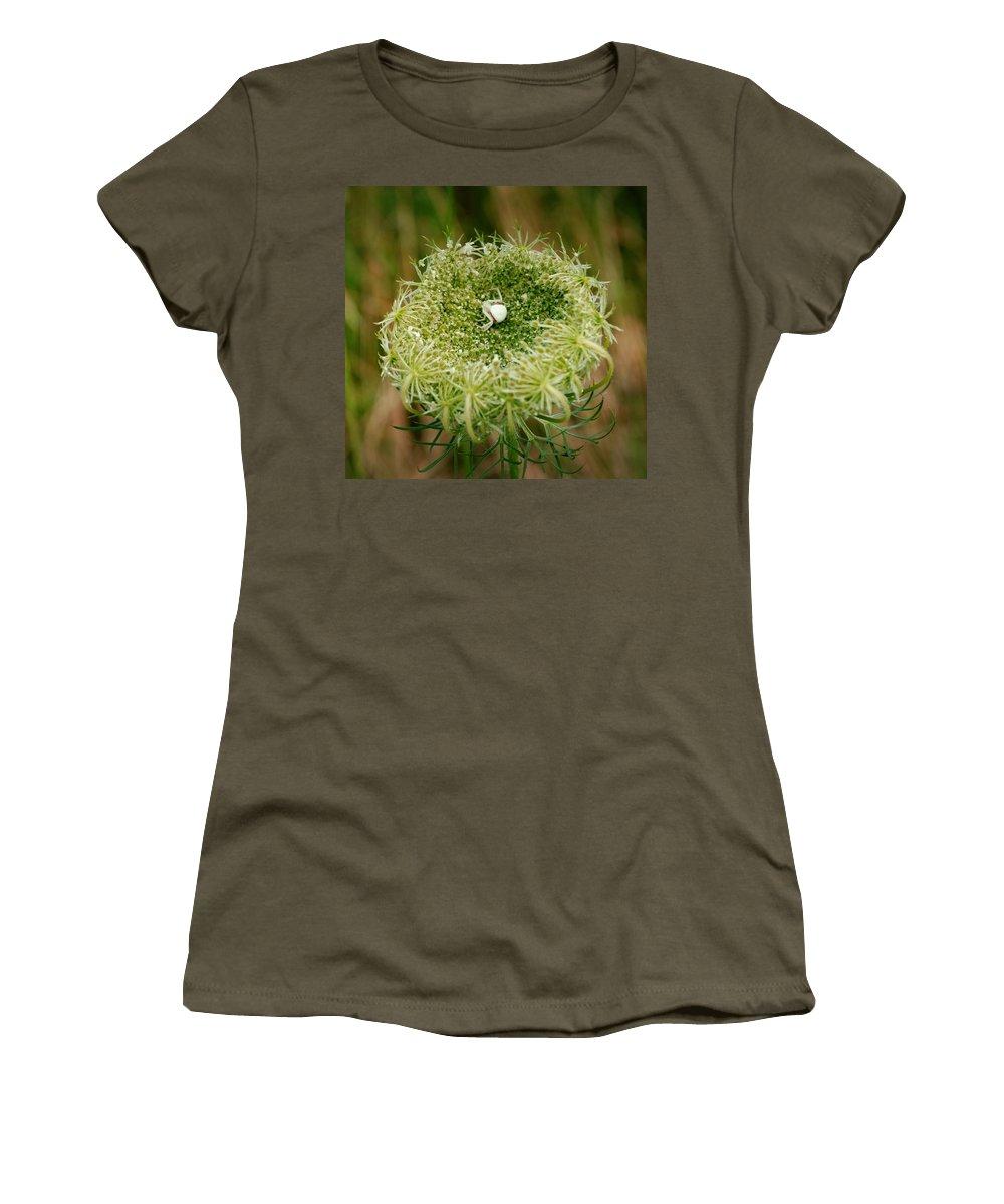 White Spider Women's T-Shirt featuring the photograph Arrogant Stalker by Laureen Murtha Menzl