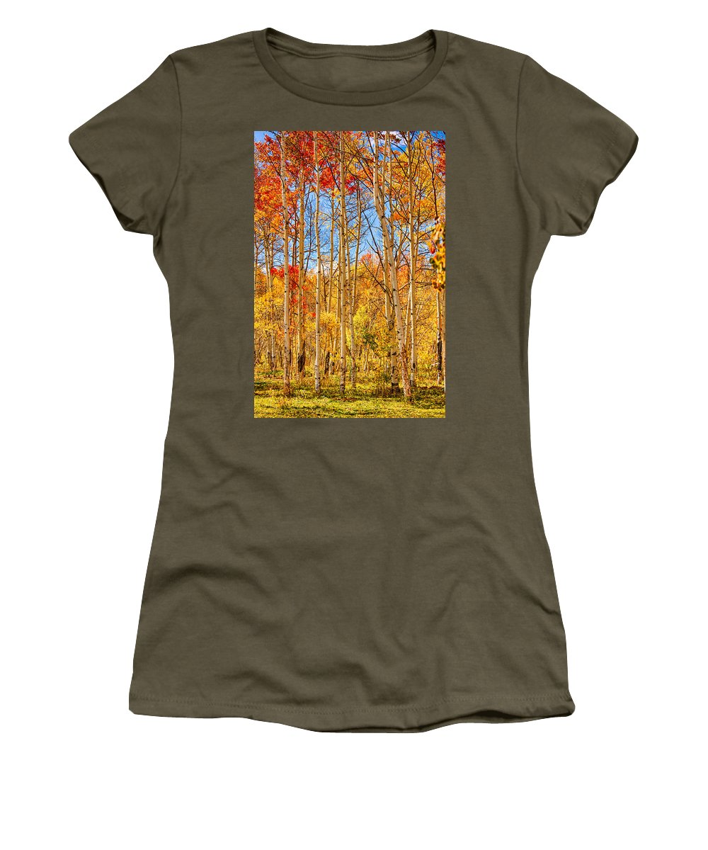 Autumn Women's T-Shirt featuring the photograph Aspen Fall Foliage Portrait Red Gold And Yellow by James BO Insogna