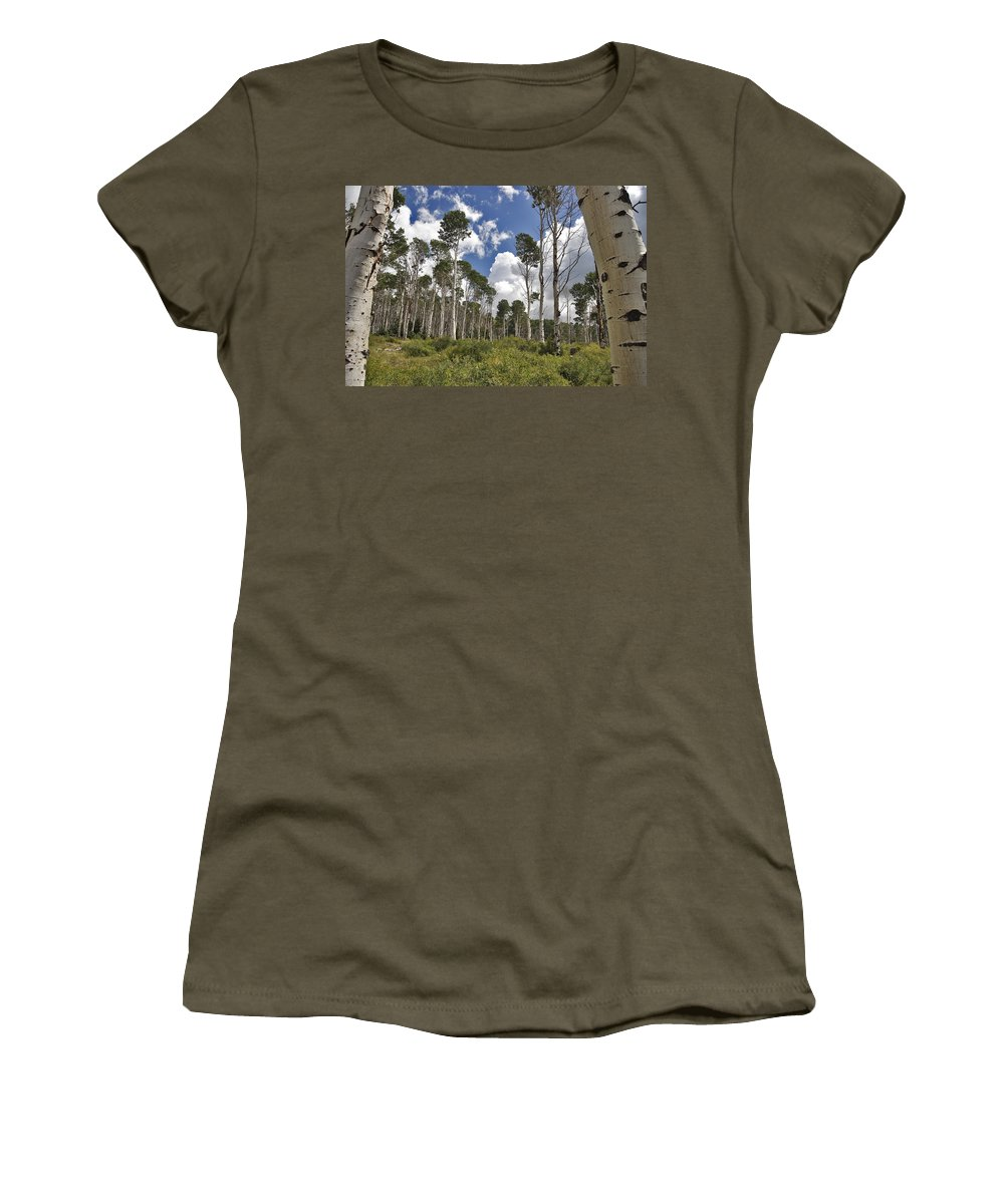 3scape Photos Women's T-Shirt (Athletic Fit) featuring the photograph Aspen Grove by Adam Romanowicz