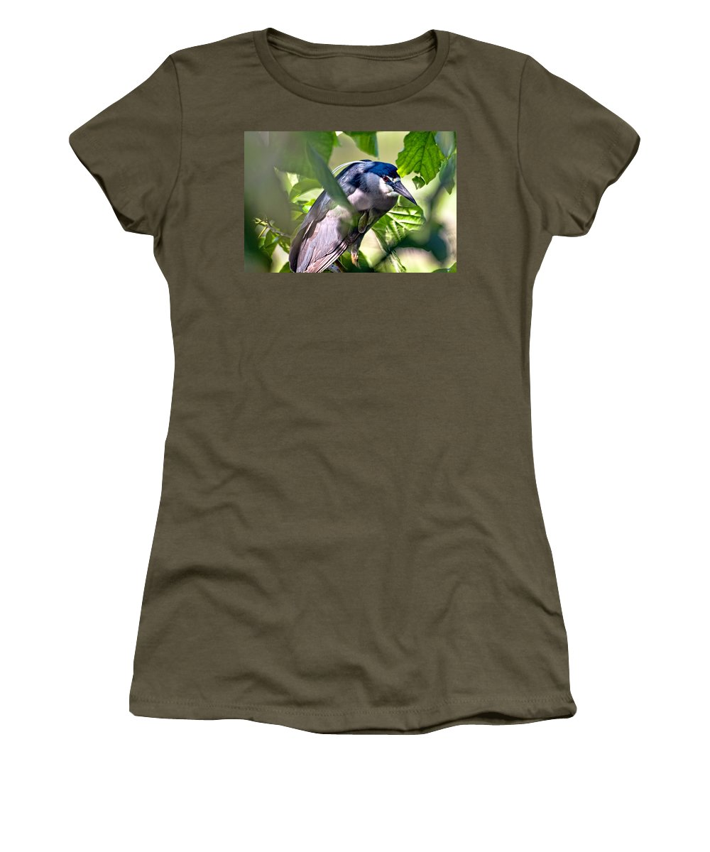 Hawaii Women's T-Shirt (Athletic Fit) featuring the photograph Aukuu Or Black Crowned Night Heron by Dan McManus
