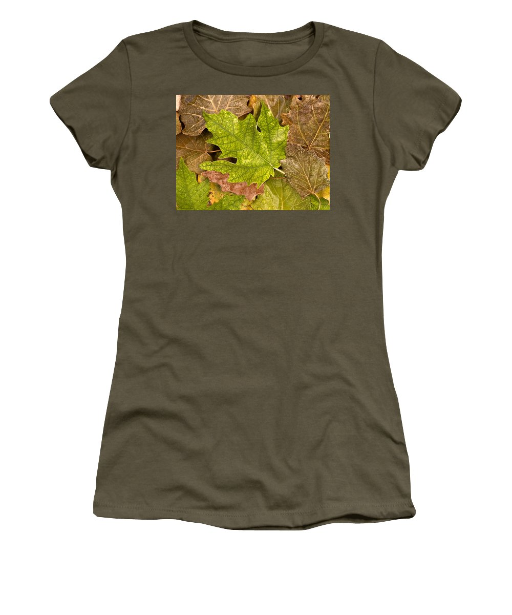 Nobody Women's T-Shirt featuring the photograph autumm is coming 3 - A carpet of autumn color leaves by Pedro Cardona Llambias