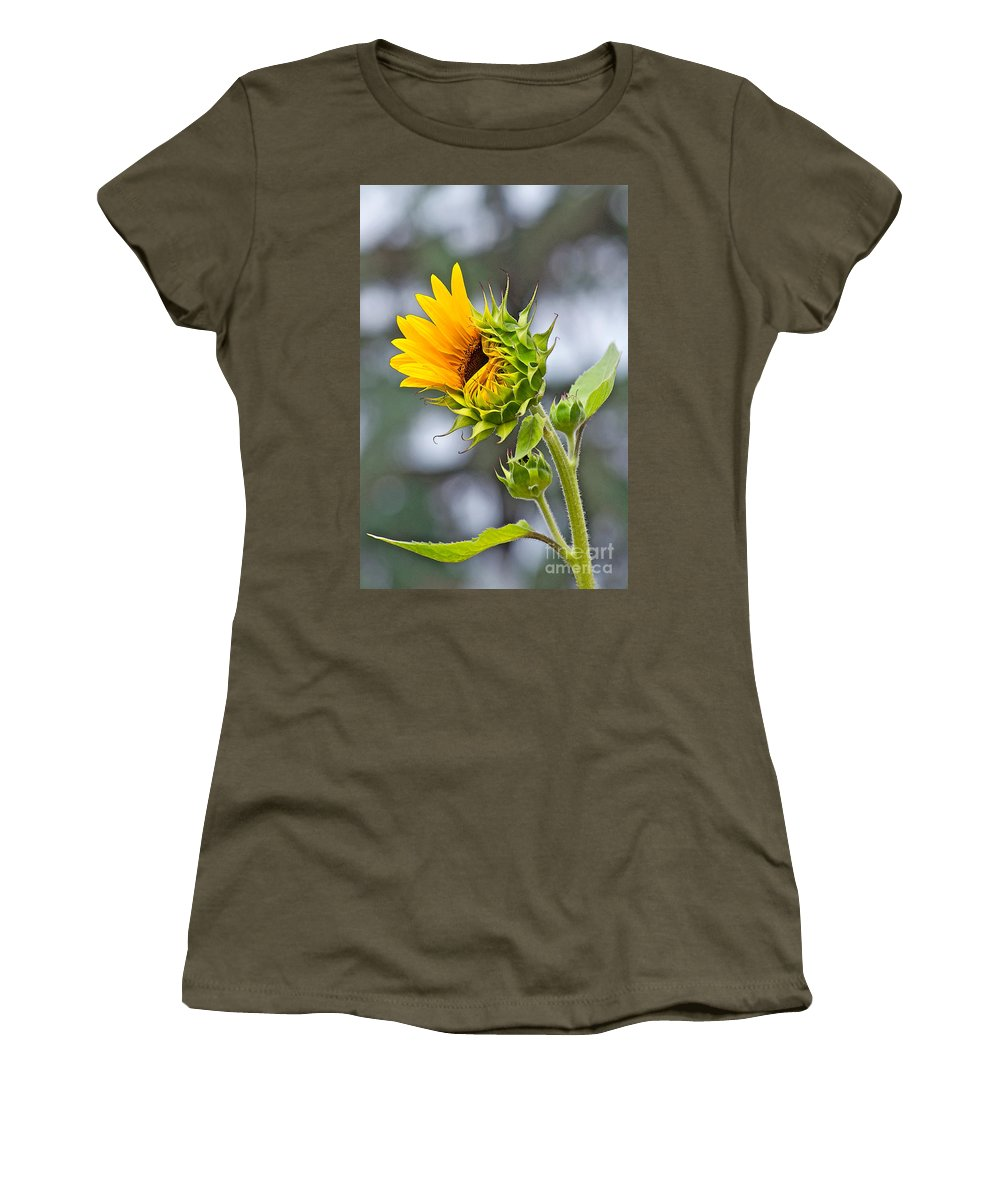 Sunflower Women's T-Shirt featuring the photograph Awe What The Heck by Gwyn Newcombe