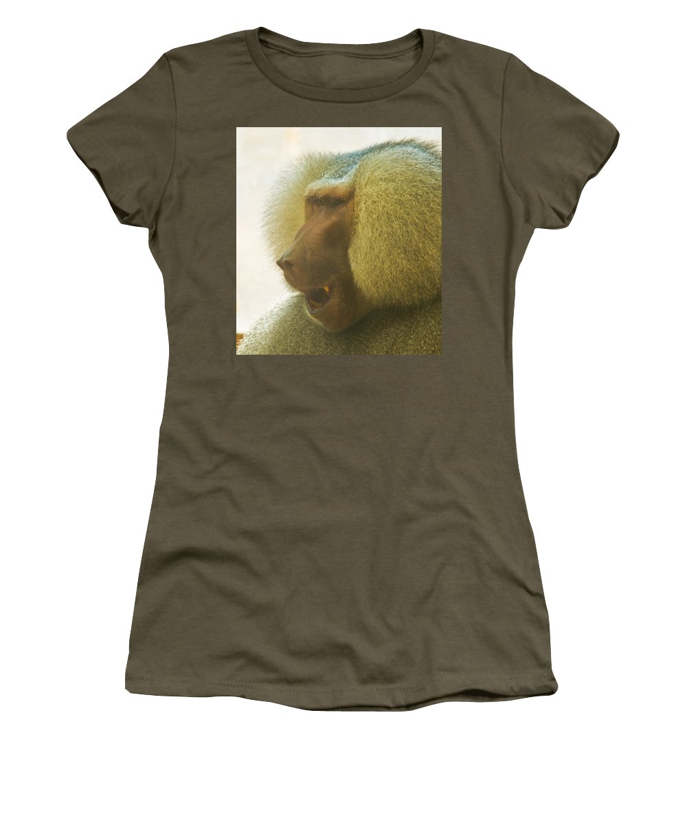 Baboon Women's T-Shirt featuring the photograph Baboon In The Sun by Jonny D