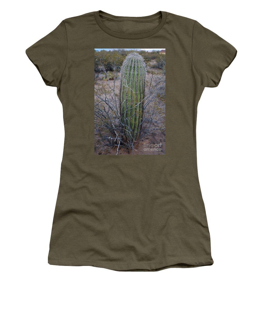 America Women's T-Shirt featuring the photograph Baby Saguaro Cactus by Kerri Mortenson